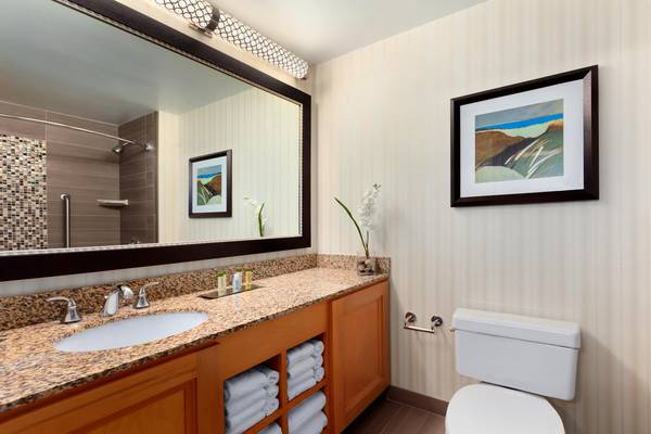 Bathroom vanity at Doubletree Suites Hilton Orlando Disney World Resort