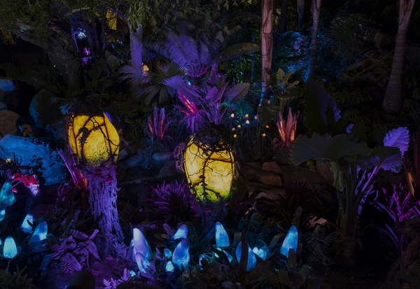 Bioluminescent Plants (Preston Mack)