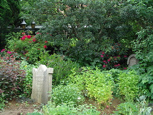 Graveyard at Haunted Mansion, showing the lovely landscaping.