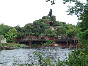 View of Splash Mountain across the water.